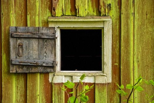 Kostenloses Stock Foto zu holz, mauer, blätter, rustikal