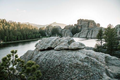 Ingyenes stockfotó erdő, fák, festői, geológia témában