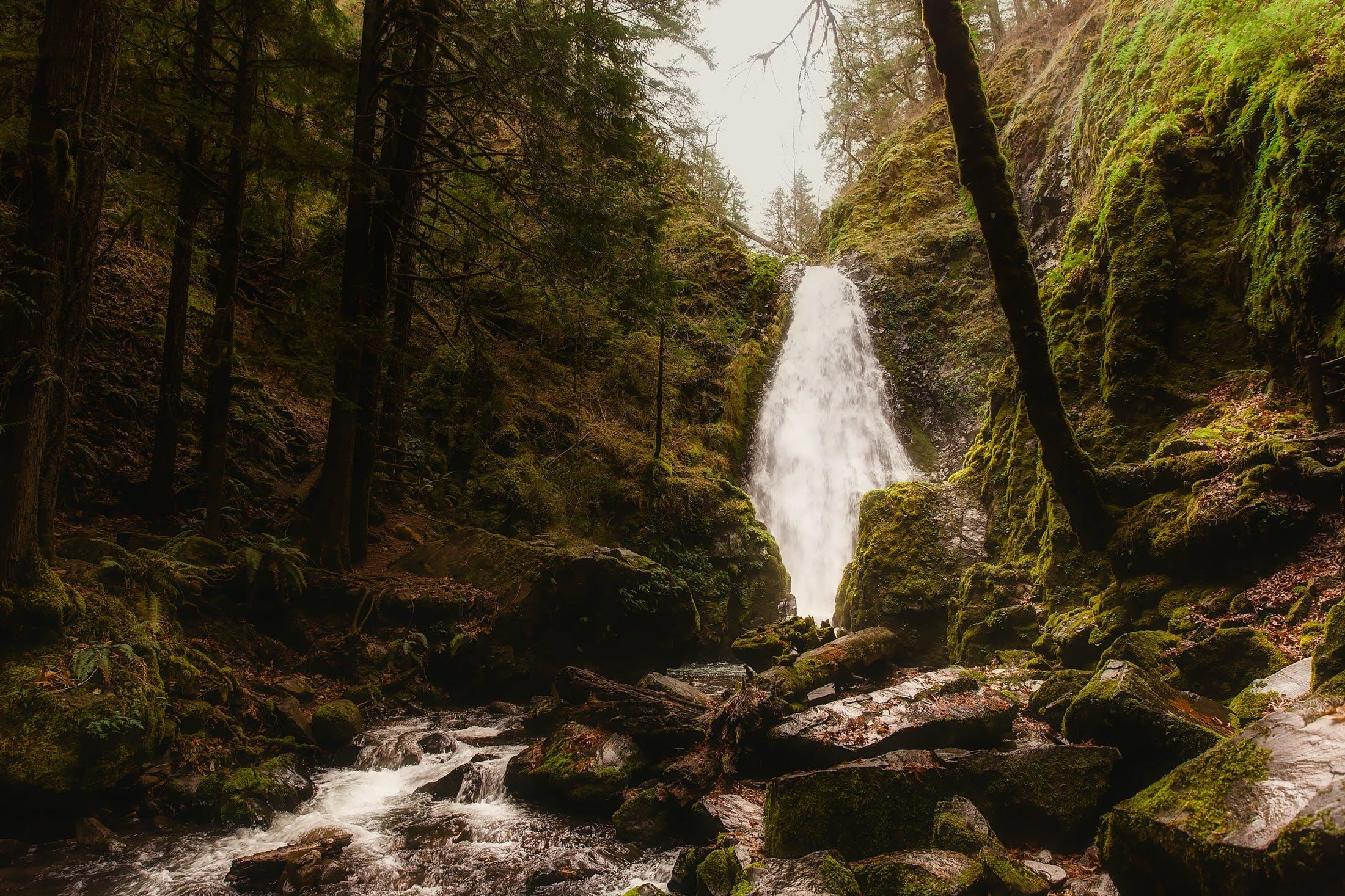 Kostenloses Stock Foto zu landschaft, natur, mann, wasser