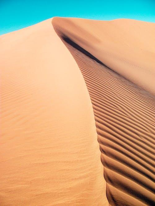 Foto d'estoc gratuïta de àrid, desert, duna, duna de sorra