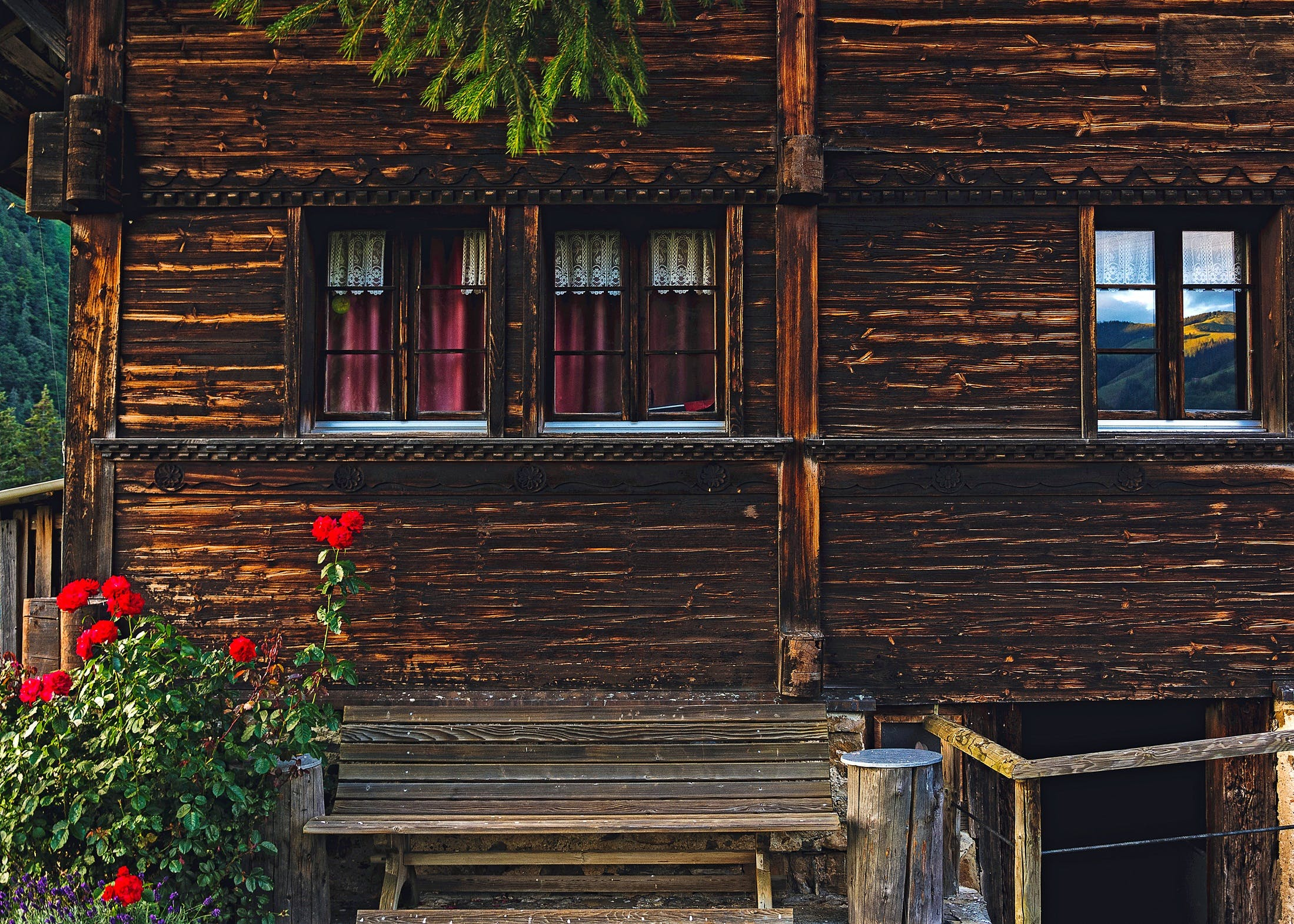 Red Petaled Flower by Porch of Brown Wooden House