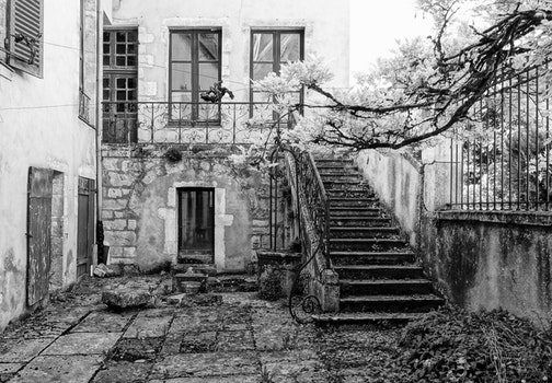 Free stock photo of black-and-white, leave, run down, old house
