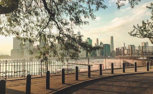 açık hava, ağaçlar, barışçıl, binalar içeren Ücretsiz stok fotoğraf