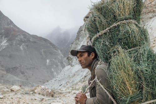 남자, 사람, 잔디, 파키스탄의 무료 스톡 사진
