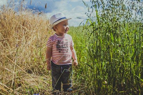 Základová fotografie zdarma na téma chlapec, dítě, farma, hřiště