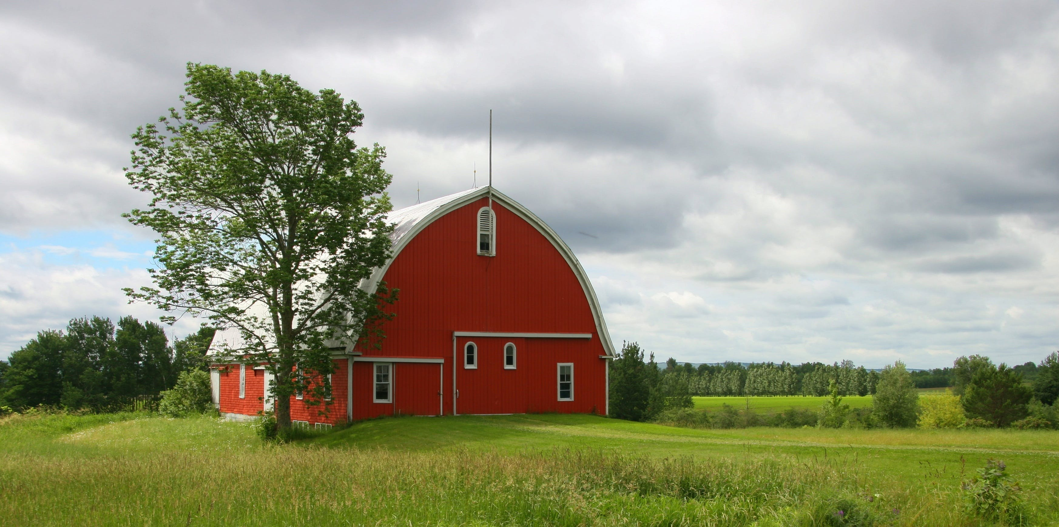 agriculture, architecture, barn