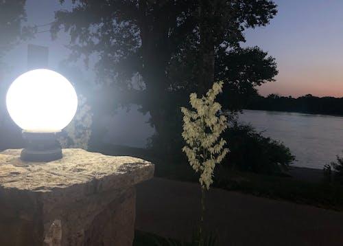 Ilmainen kuvapankkikuva tunnisteilla joki, kesä, kevyt, yö