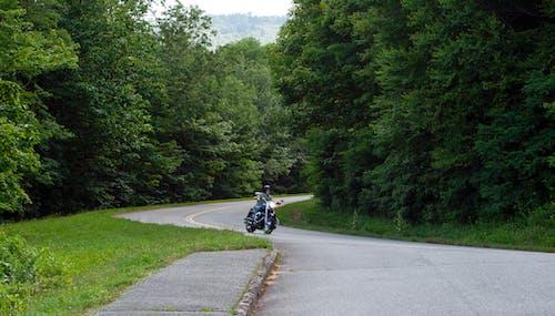 Gratis stockfoto met bergen, biker, blauwe randbrede rijweg, Bos