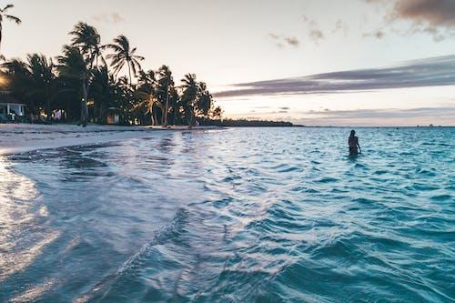 Immagine gratuita di acqua, alba, bagnasciuga, bagnato