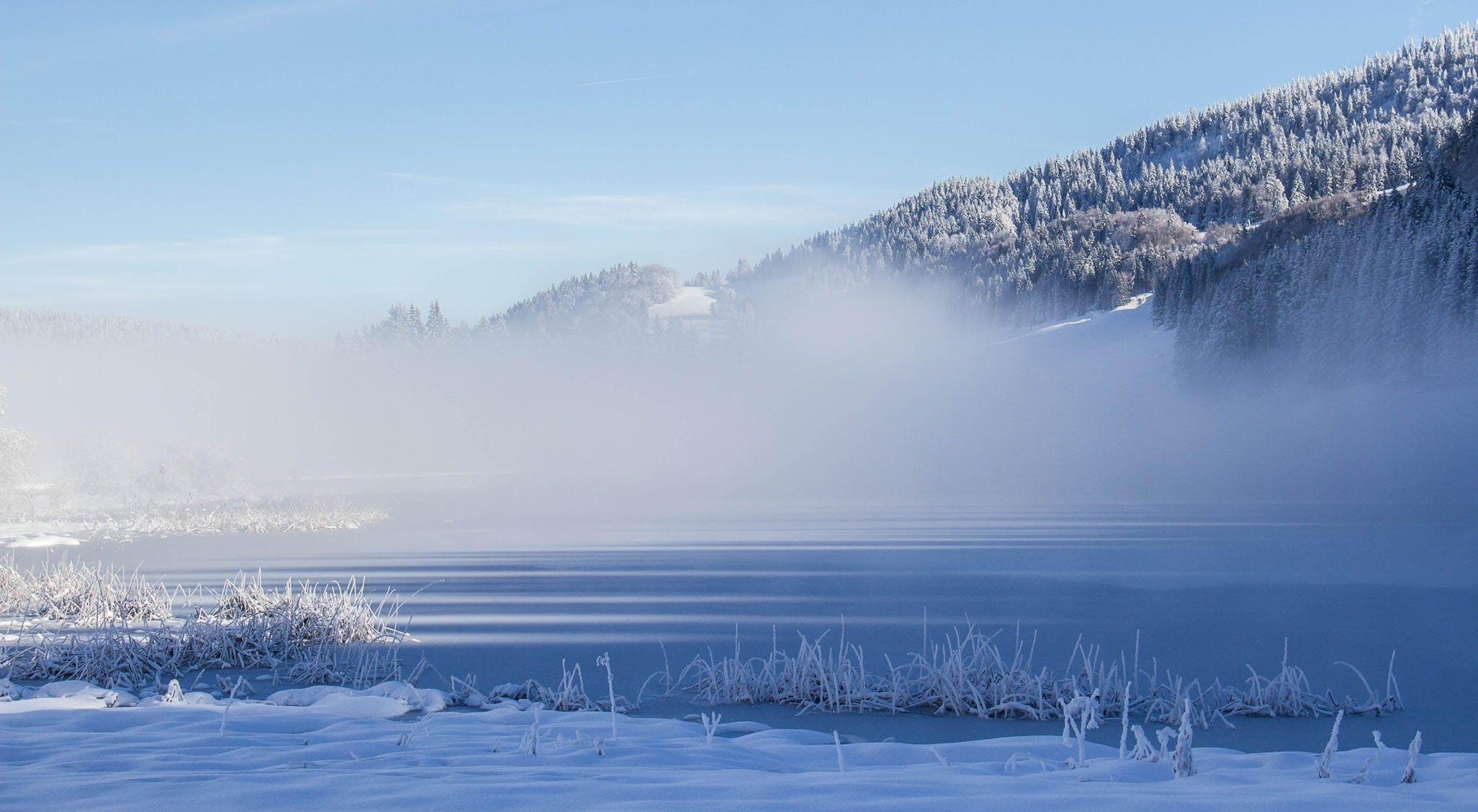Fotos de stock gratuitas de agua, al aire libre, blanco como la nieve, campo
