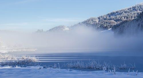 Gratis arkivbilde med åker, fjell, forkjølelse, frosset