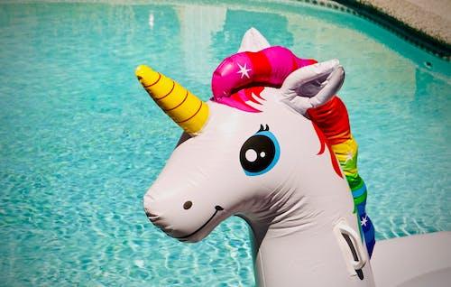 Fotobanka sbezplatnými fotkami na tému bazén, biela, dúha, exteriér