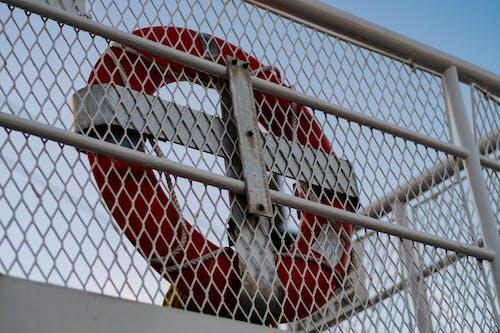 Photos gratuites de bc ferries, bouée, ferry