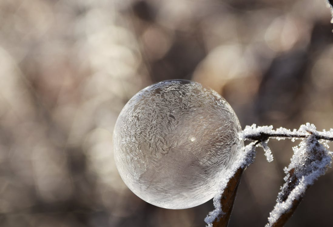 Brown Dried Leaf With Iced Bubble