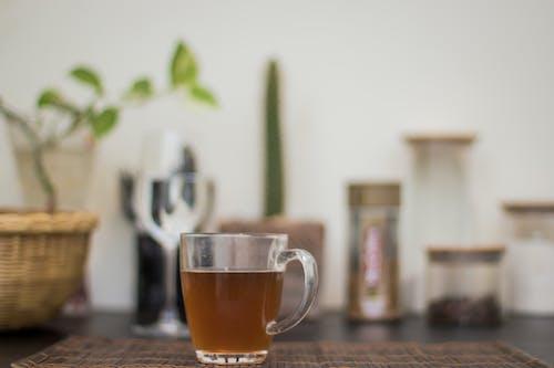Gratis arkivbilde med glass kopp, glasskrukke, grønn te, innendørs
