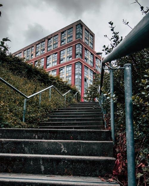 Бесплатное стоковое фото с архитектура, городской, заводы, здание
