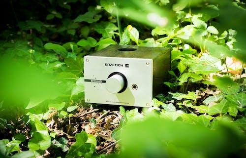 Kostnadsfri bild av audiofil, elektronik, förstärkare, grön