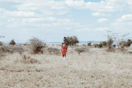 Δωρεάν στοκ φωτογραφιών με lungi, άνδρας, άνθρωπος, ανοιχτό πεδίο