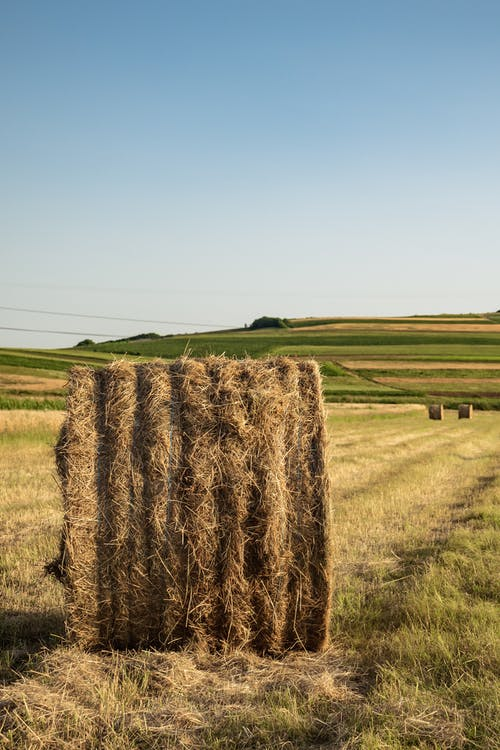 Photo of Hay Bale on Grass Field