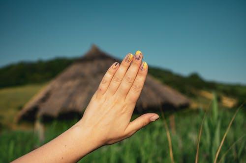 修剪指甲, 修手指甲, 剪手指甲, 專注 的 免费素材照片