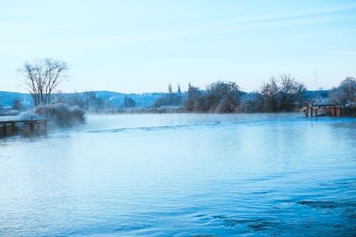 Foto profissional grátis de água, árvores, cênico, com frio