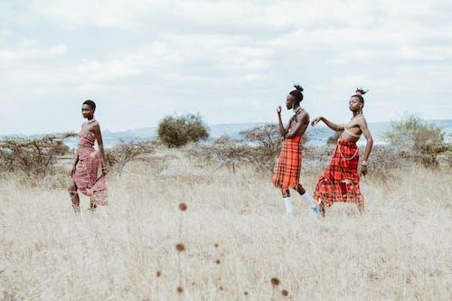 Základová fotografie zdarma na téma africké lidi, černoši, chůze, etnický