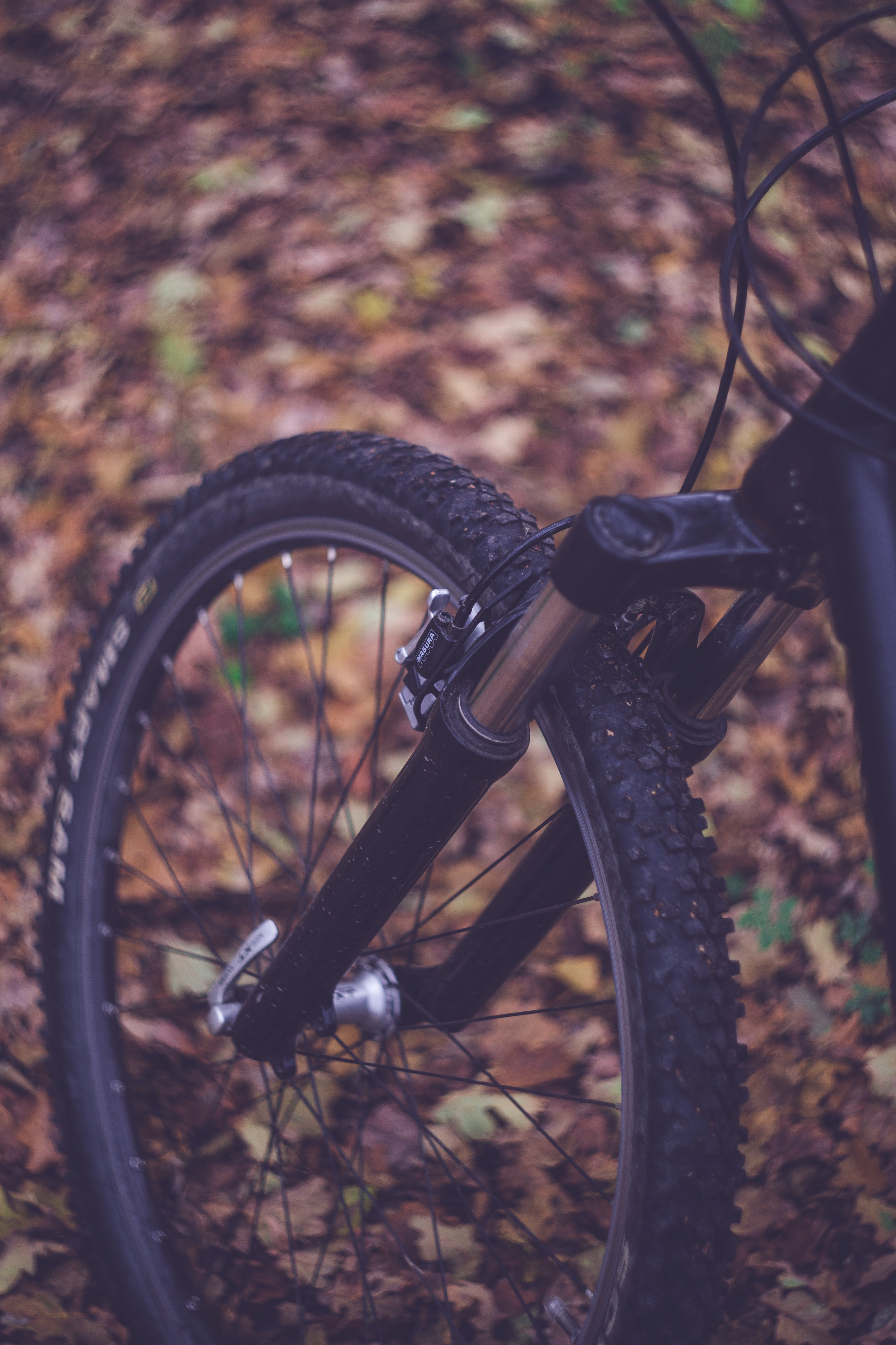 Tilt Shift Focus Photography of Bicycle on Outdoors