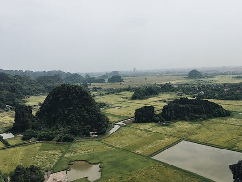 Безкоштовне стокове фото на тему «ninhbinh, vietnamninhbinh, В'єтнам, зелений»