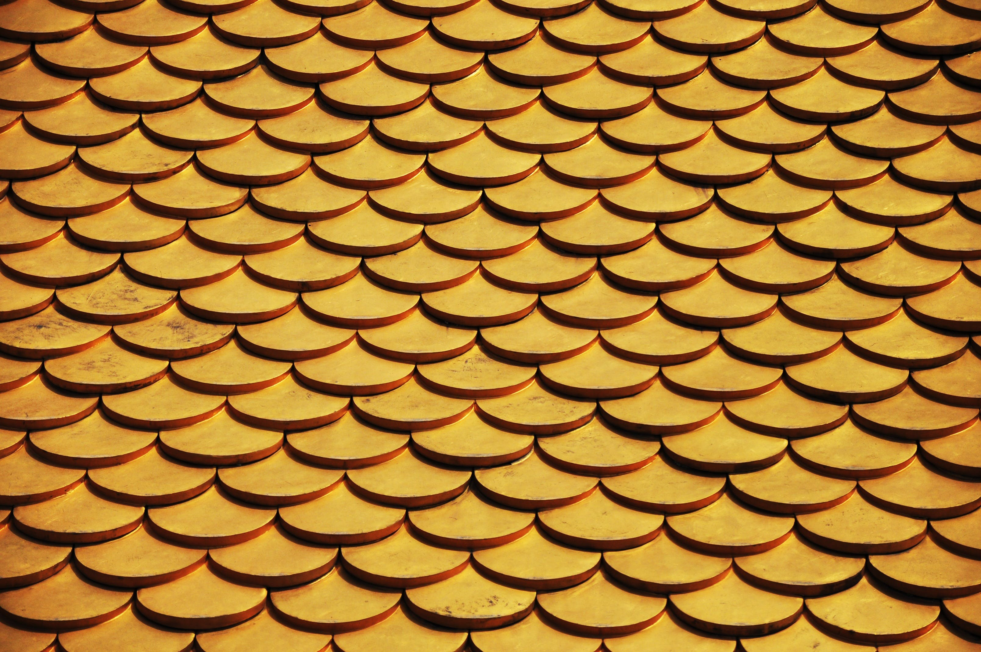 Photo of Cone Pattern
