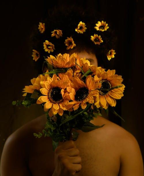 คลังภาพถ่ายฟรี ของ กลีบดอก, การถ่ายภาพ, การเจริญเติบโต, กำลังบาน