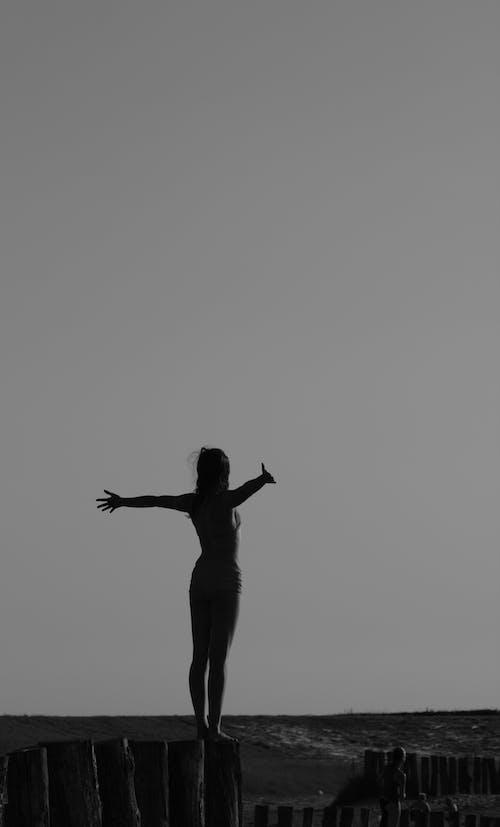 Fotos de stock gratuitas de blanco y negro, cerca, hembra, libertad