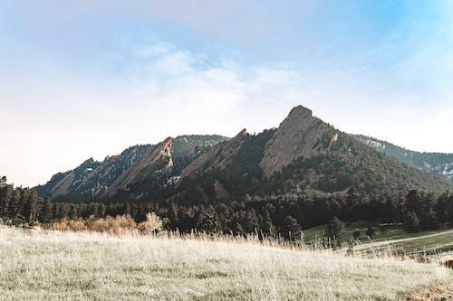 Δωρεάν στοκ φωτογραφιών με αγροτικός, βουνό, γήπεδο, γραφικός