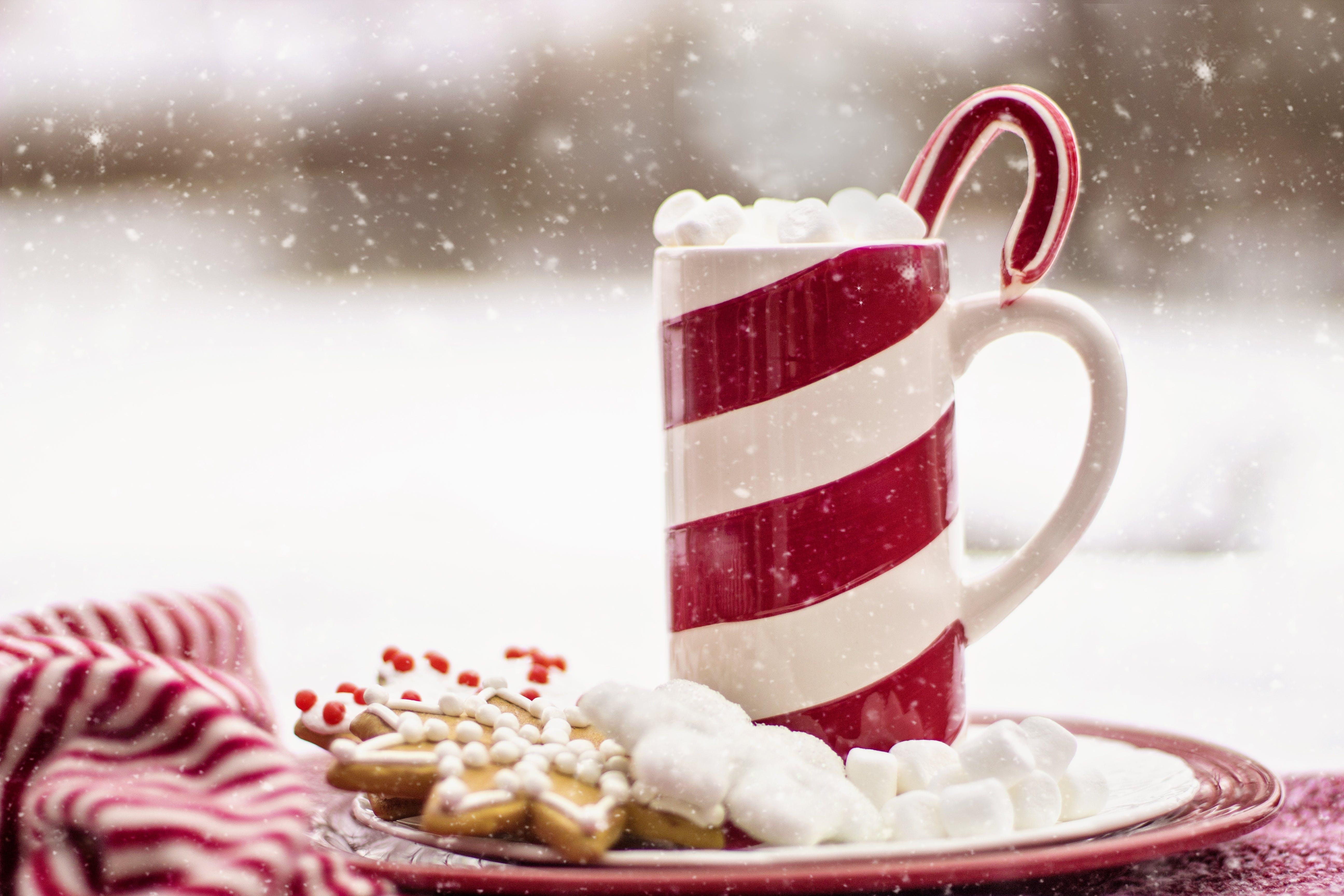 Kostenloses Stock Foto zu becher, cookies, dessert, erfrischung