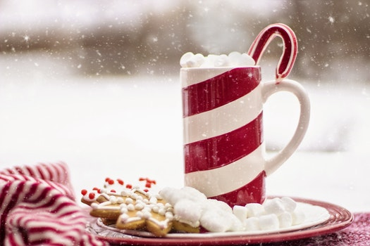 Free stock photo of food, plate, snow, holiday