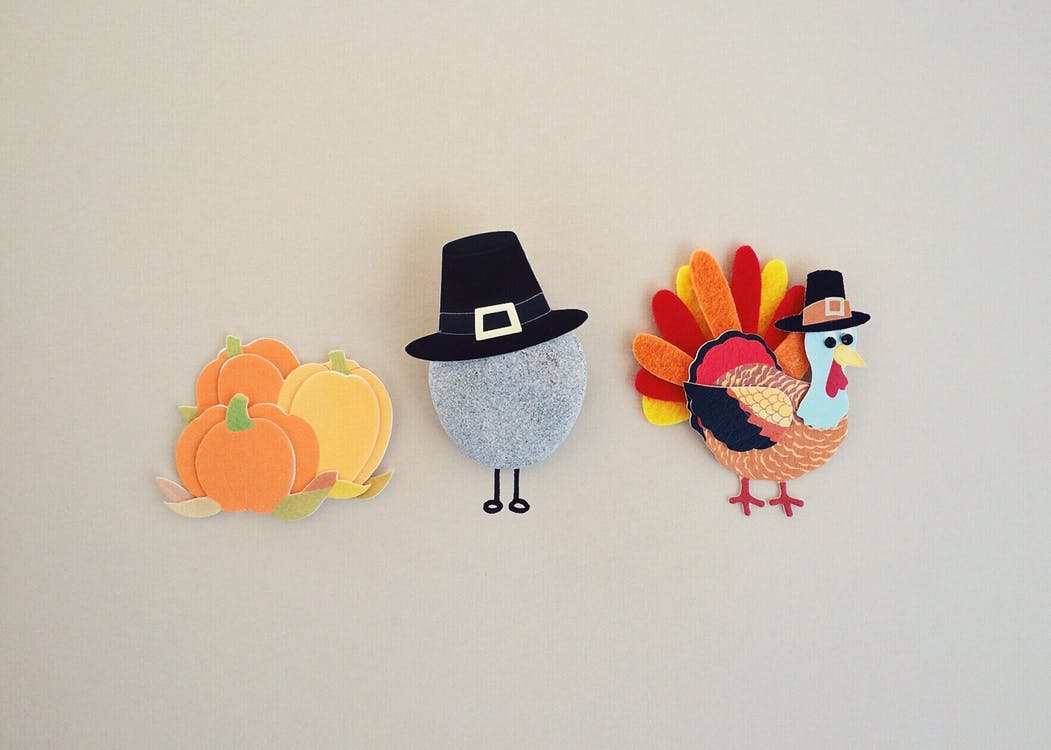 Free stock photo of holiday, season, thanksgiving