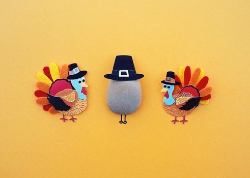 Free stock photo of holiday, dinner, autumn, traditional