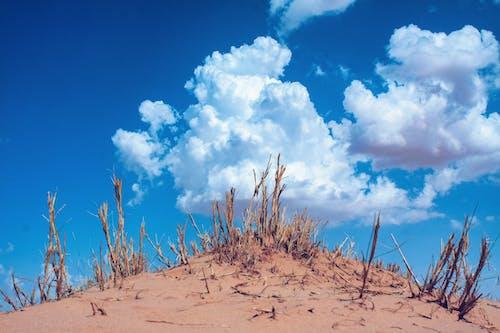 Ilmainen kuvapankkikuva tunnisteilla #awsomeearth, #canon, #clouds, #dramaattinen
