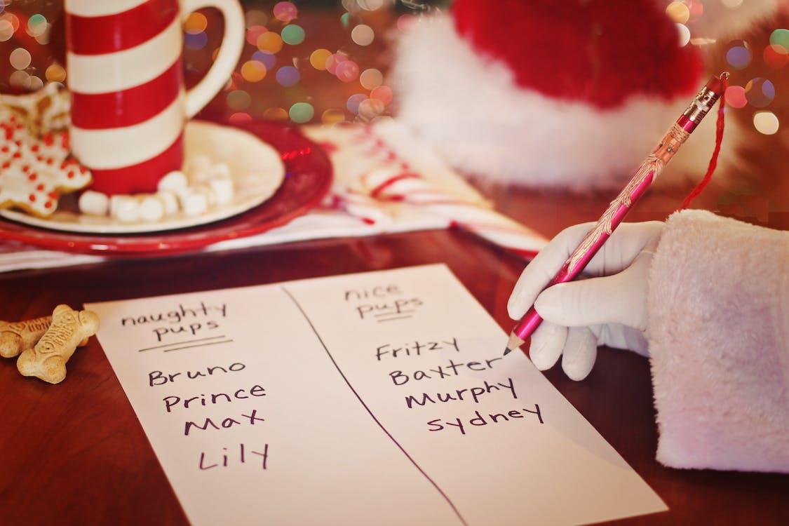 Santas Naughty List