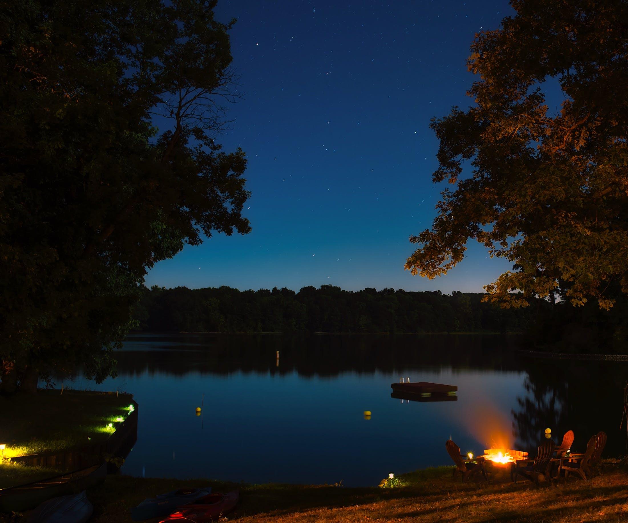 Fotos de stock gratuitas de agua, amanecer, arboles, bosque