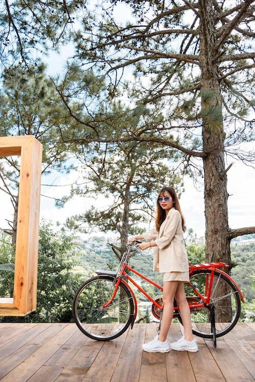 Ingyenes stockfotó bicikli, fák, fapadló, kézben tart témában