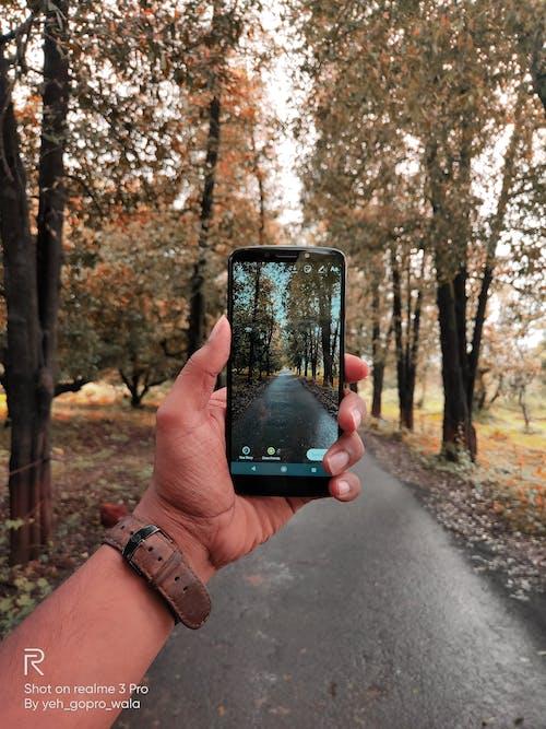 경로들, 교차로, 녹지, 도로의 무료 스톡 사진