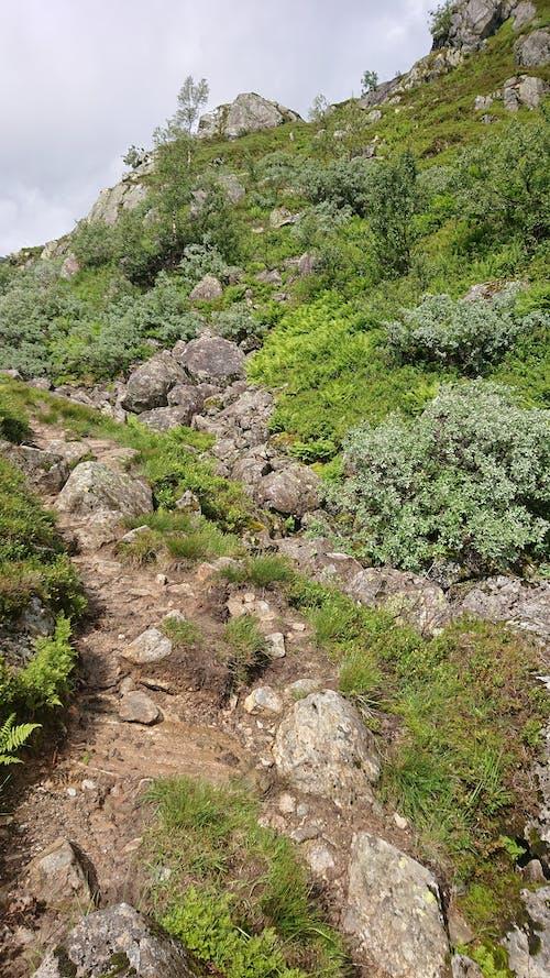 Ảnh lưu trữ miễn phí về con đường tự nhiên, đám mây, đi bộ đường dài, Na Uy