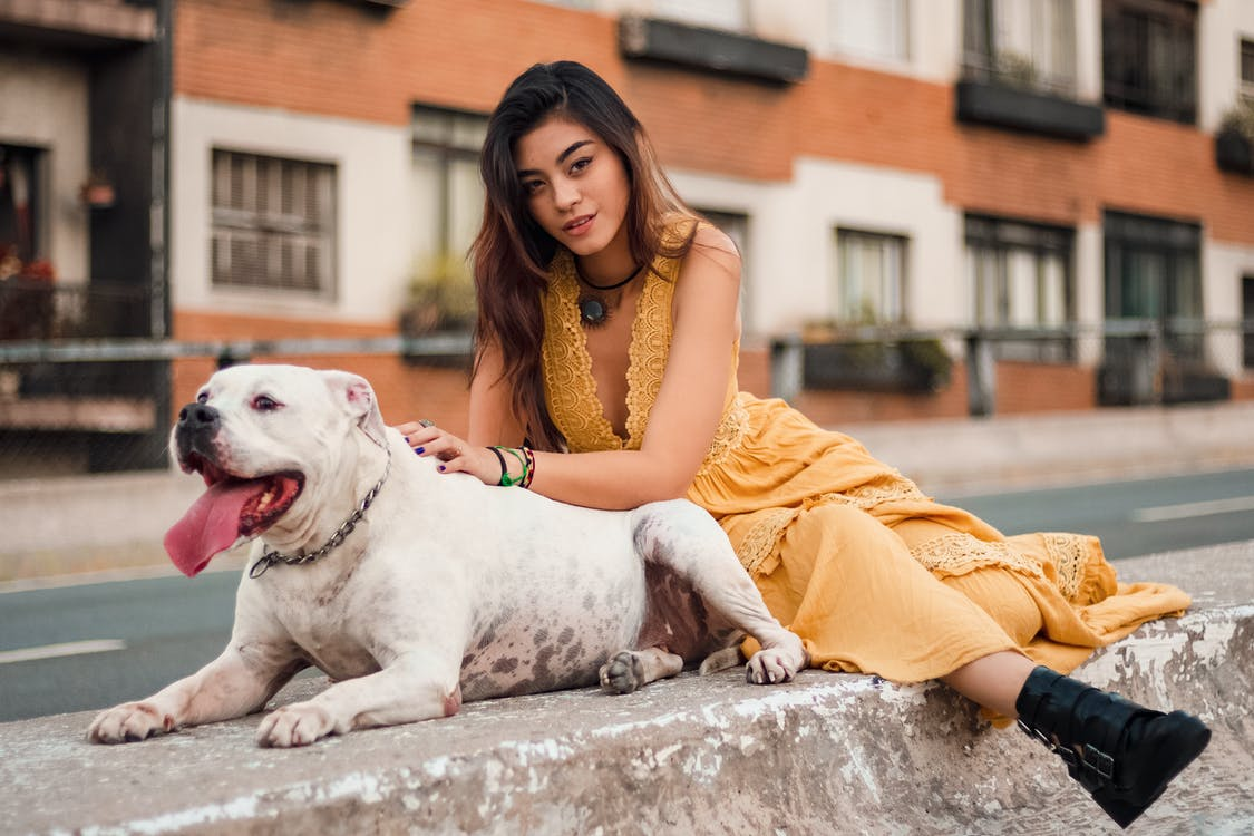 Photo of Woman Sitting on Concrete Barrier Next to Short-coated White Dog