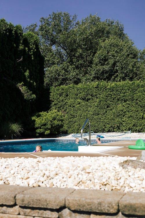 Photos gratuites de ambiance d'été, baignade sécuritaire, camp d'été, dehors