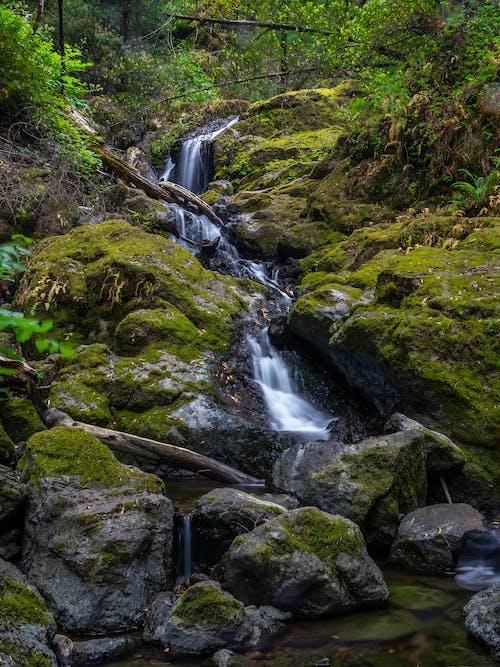 Foto stok gratis air, air terjun katarak, alam, aliran