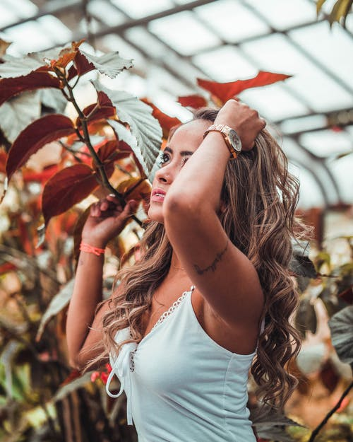 Free stock photo of artificial flowers, beautiful girl, brazilian woman, canada