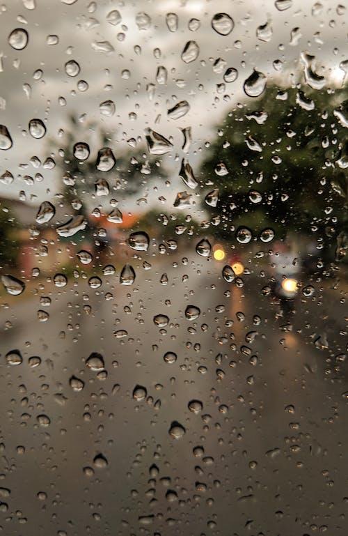 Fotobanka sbezplatnými fotkami na tému bokeh, dážď, daždivý, doprava
