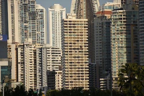 Foto stok gratis cityscape, membangun, Panama