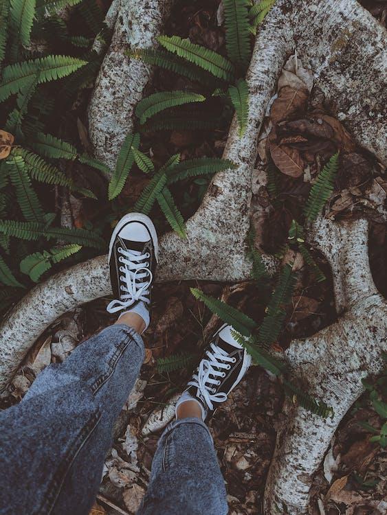 akar, alam, alas kaki