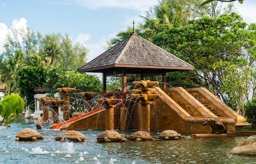 Základová fotografie zdarma na téma architektura, dovolená, plavecký bazén, relaxace